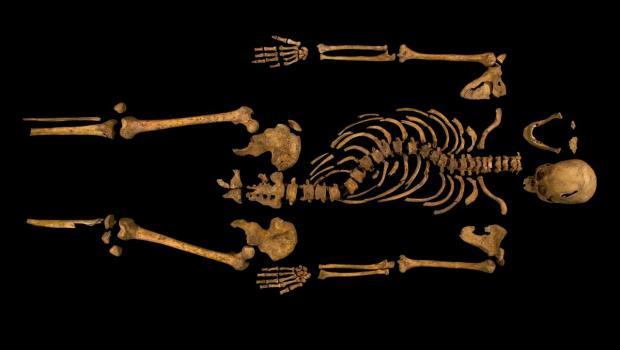 richard_iii_skeleton_620x350 kosmolitt